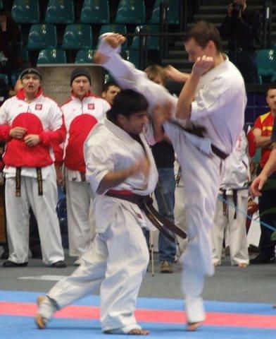 Mistrzostwa Europy Shinkyokushin we Wrocławiu 2011