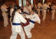 "Super Karate na ""Barbarce"" 2011"