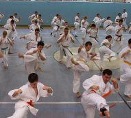 Seminarium Kumite w COS Wałcz