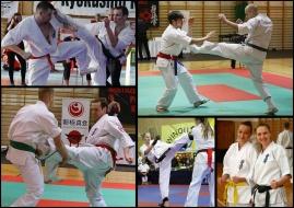 Zapisy: 📞 609 595 858 - Shihan Artur Wilento. Więcej informacji: https://bydgoszczkarate.pl/treningi/zapisy